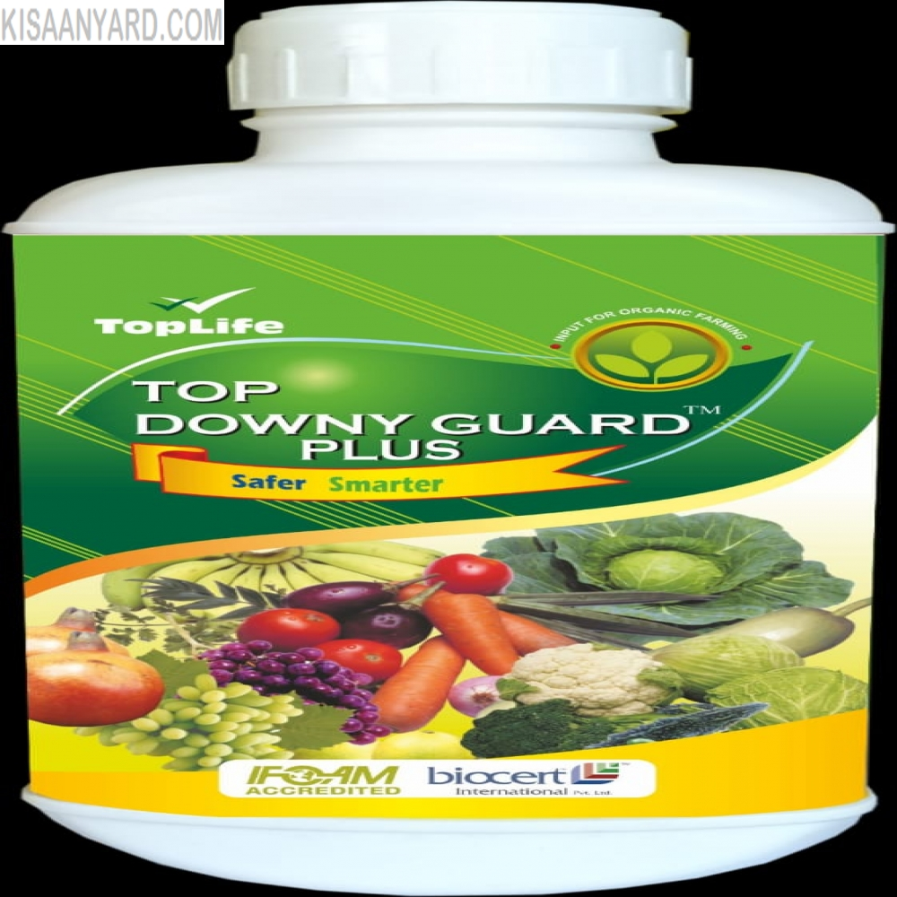 Top Downy Guard Plus